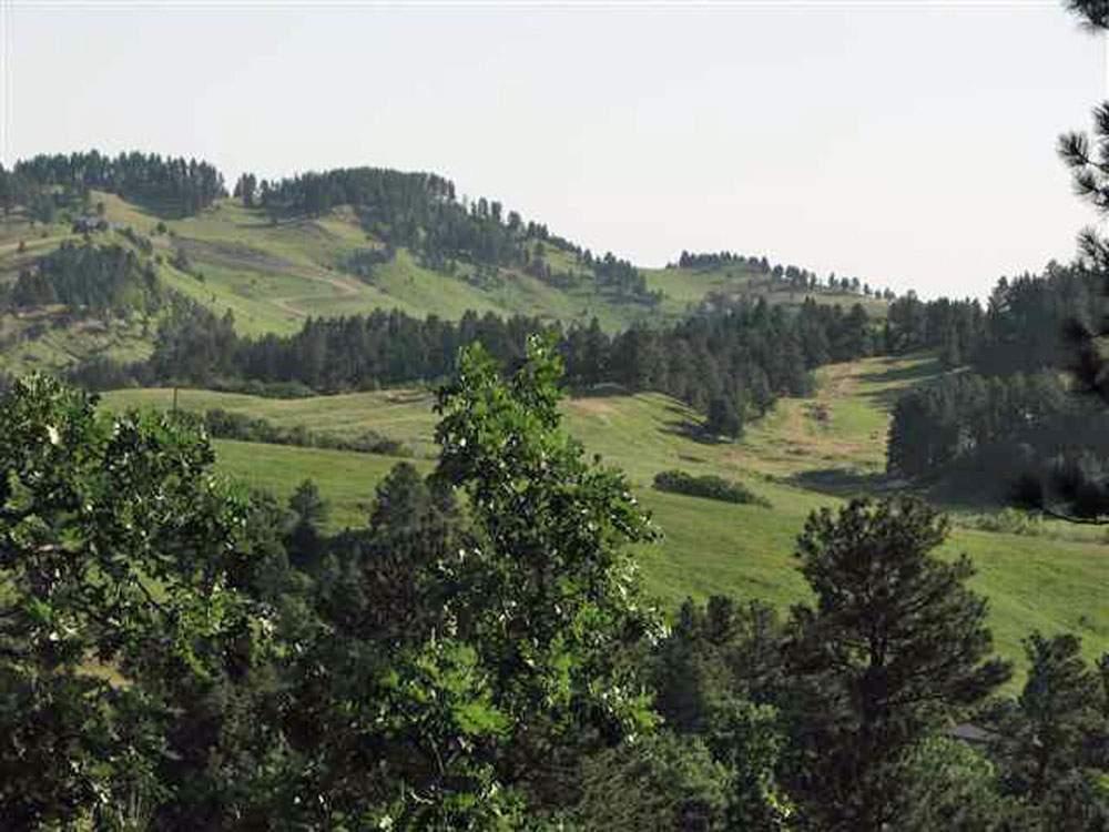 Whitewood-hills-Web